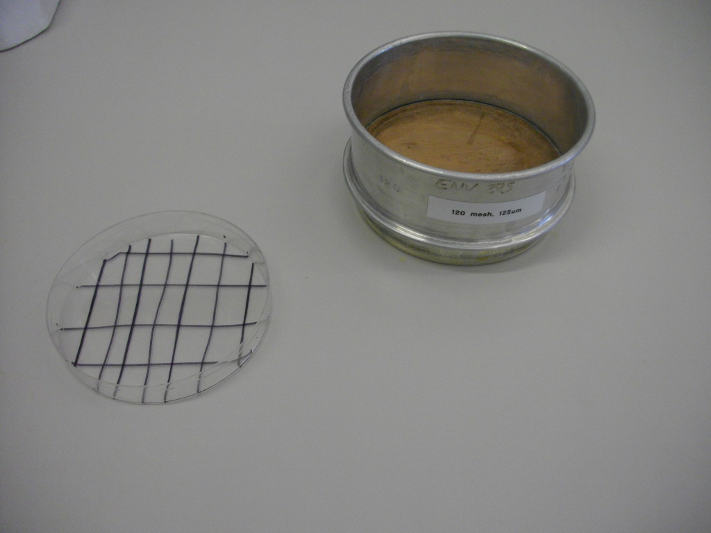 125 micron sieve and petri dish