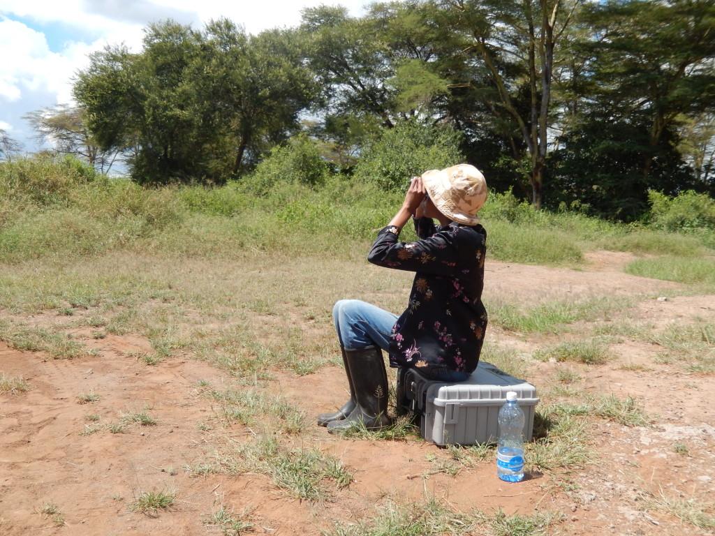 Amboseli fieldwork