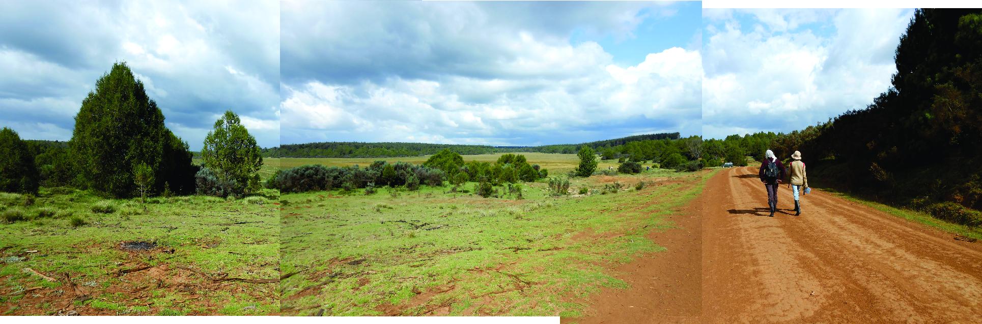 Nyabuiyabui panorama 001