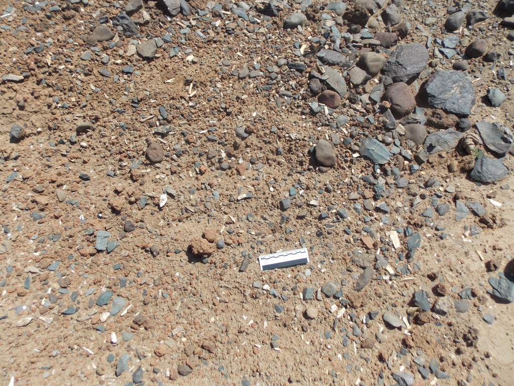 Crushed bone and pottery sherds