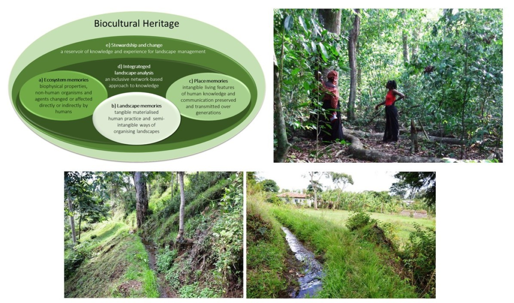 New paper on Biocultural Heritage in Africa!
