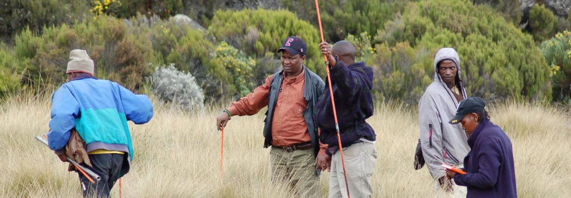 A new paper about vegetation change on Kilimanjaro